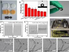 新疆理化所三维高分子纳米复合材料的制备及应用研究取得进展